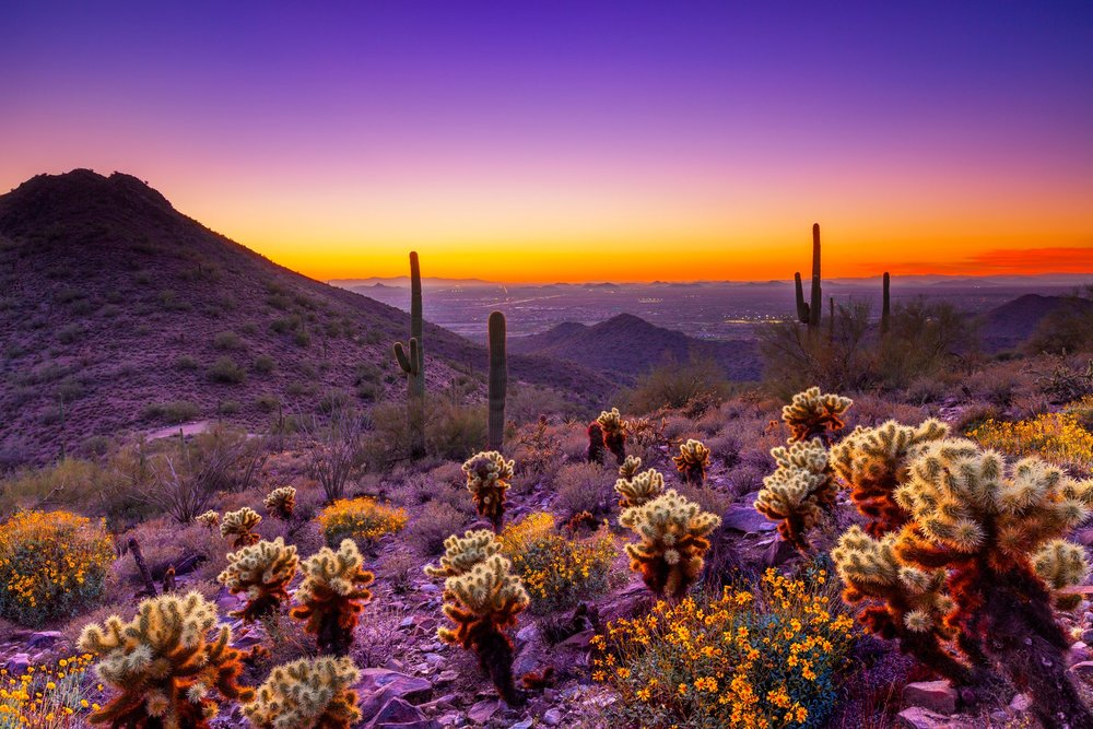 Photo Credit: Scottsdale Convention and Visitors Bureau