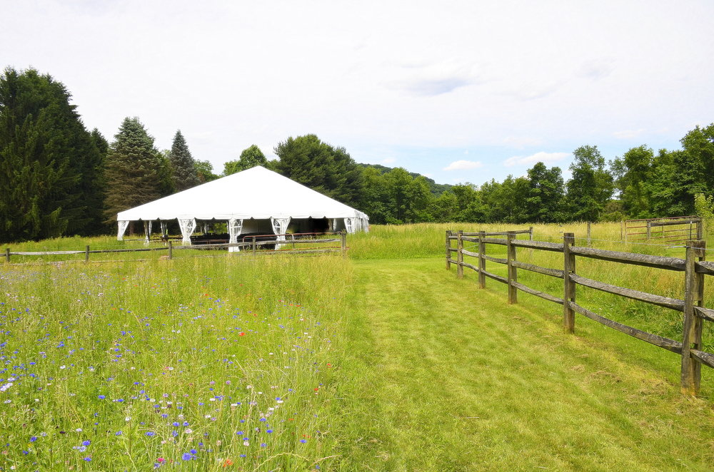 Penn Rustics Rentals_Clay Wedding_Field3.jpg
