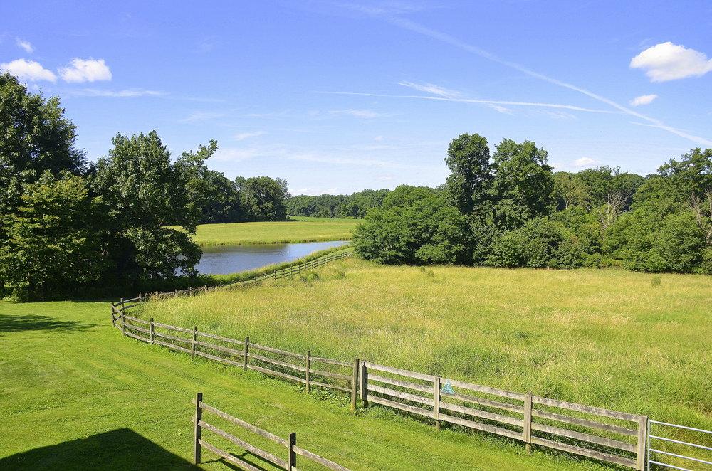 Armstrong Farms_Meadow.jpg