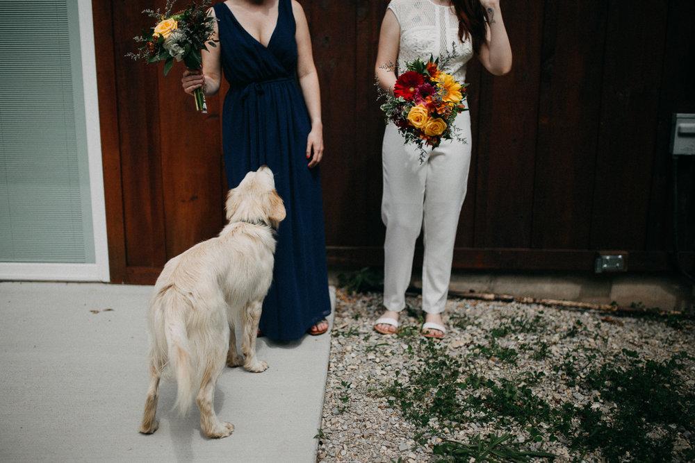 Danielle&RJ super chill backyard wedding-0766.jpg