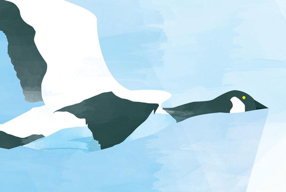 illustration-air-france-08.jpg