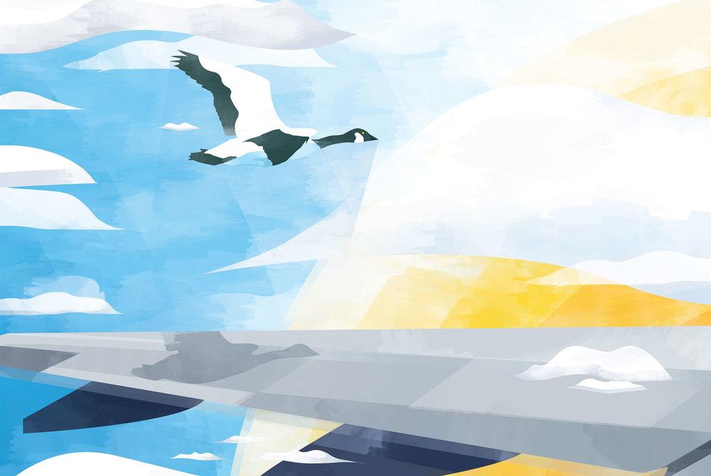 illustration-air-france-19.jpg