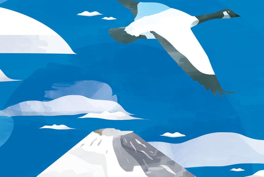 illustration-air-france-13.jpg
