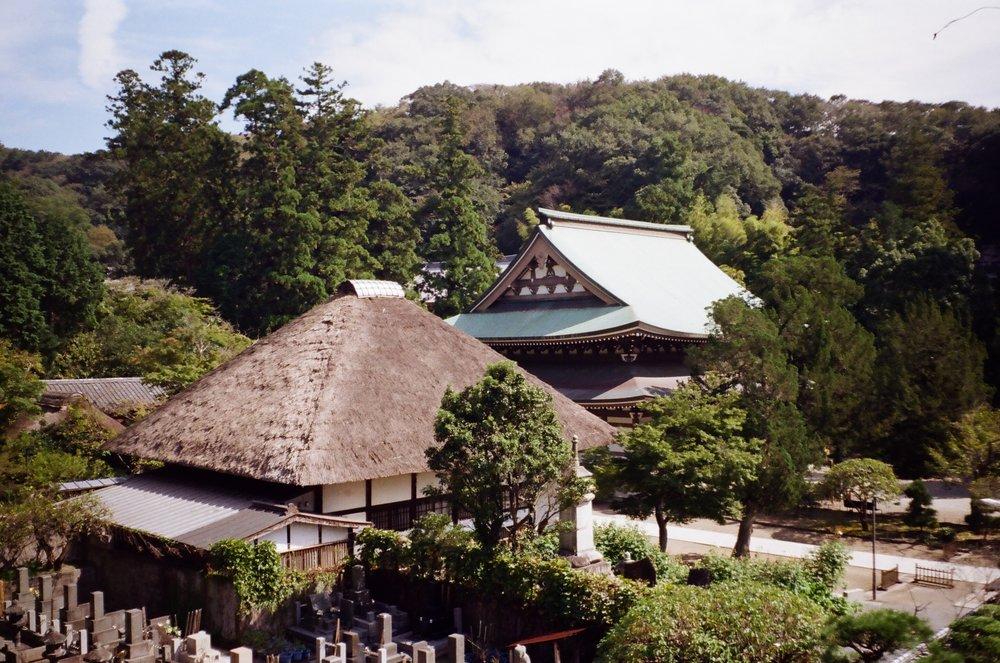 08-JAPON-argentic-Kamakura-octobre-2016-0005.jpg
