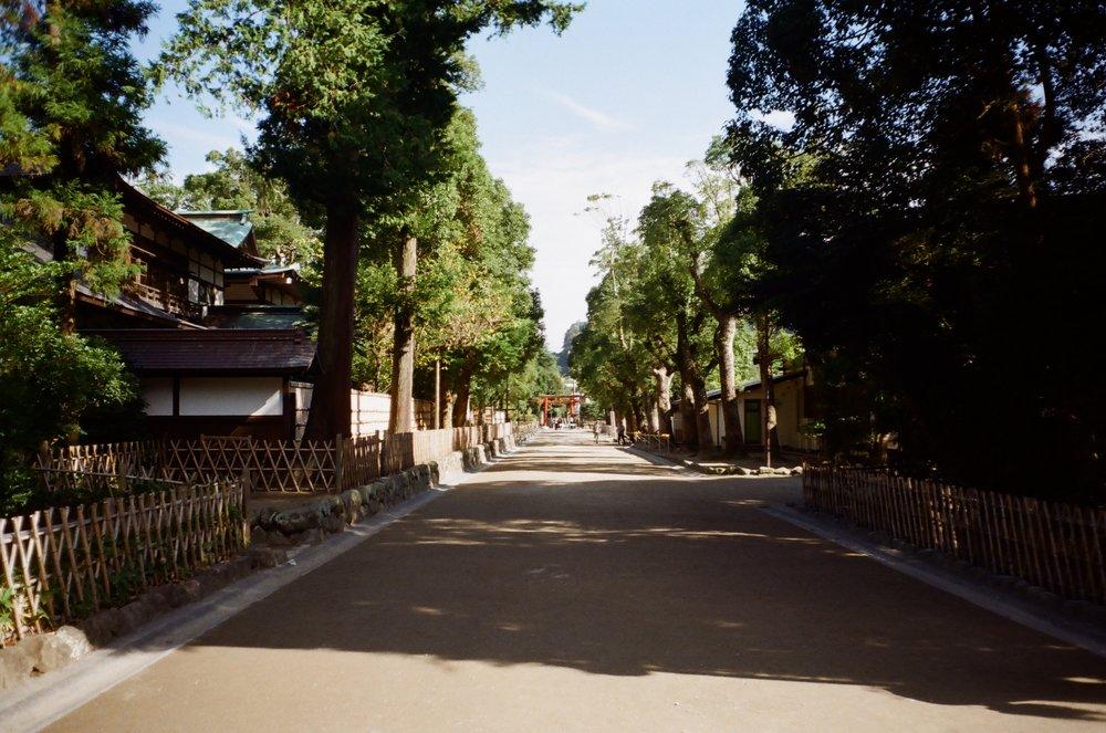 08-JAPON-argentic-Kamakura-octobre-2016-0012.jpg
