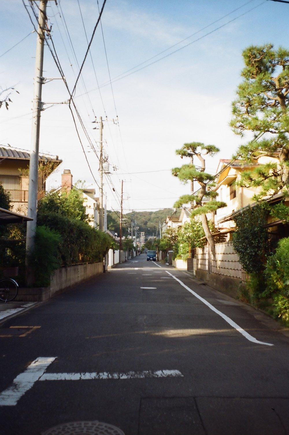 08-JAPON-argentic-Kamakura-octobre-2016-0016.jpg