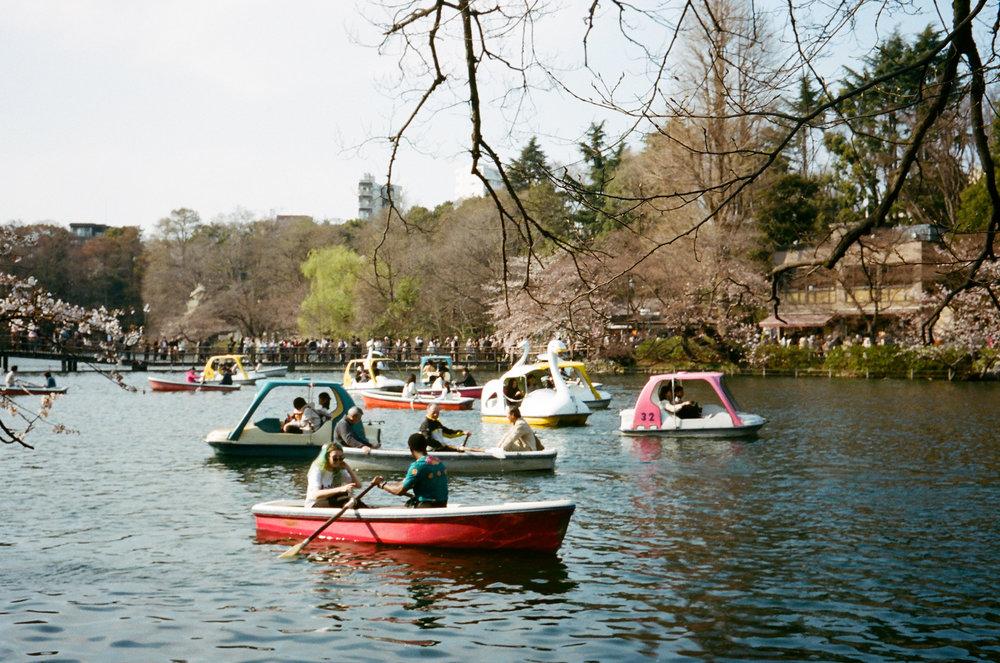 17-JAPON-argentique-Tokyo-fevrier-2017-0051.jpg