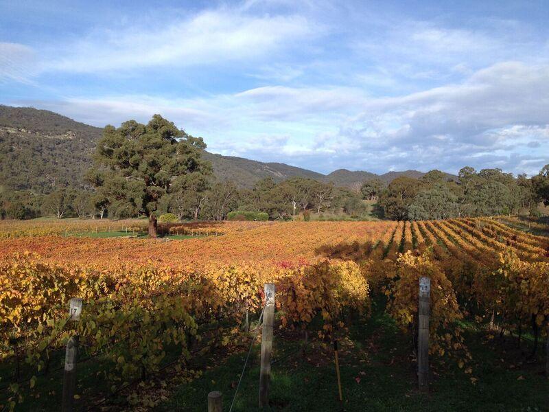 Tallarook Wines Central Victoria