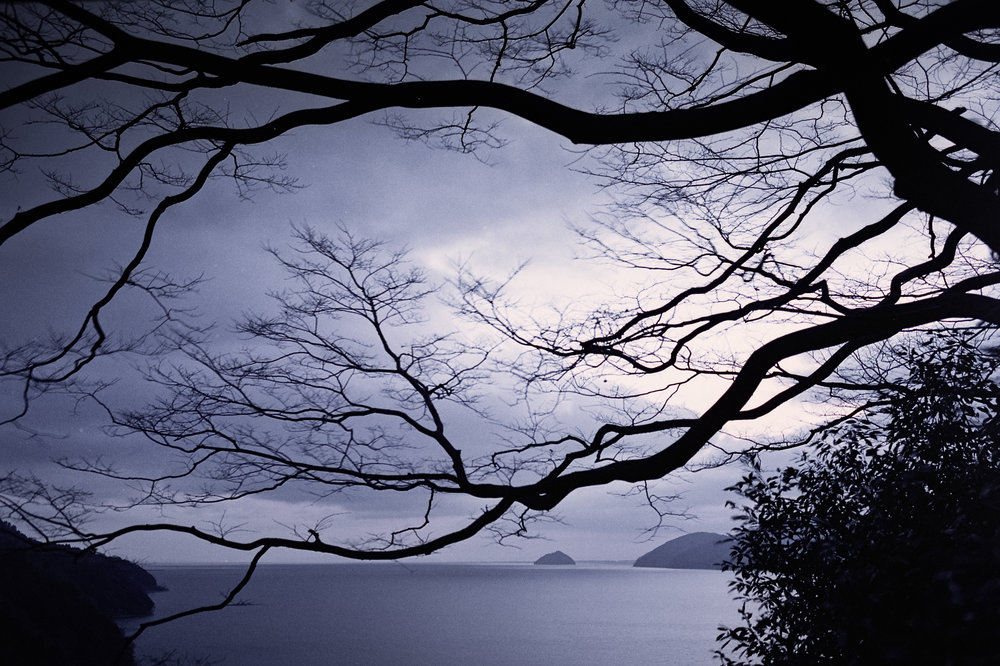 Lake Biwa-2.jpg