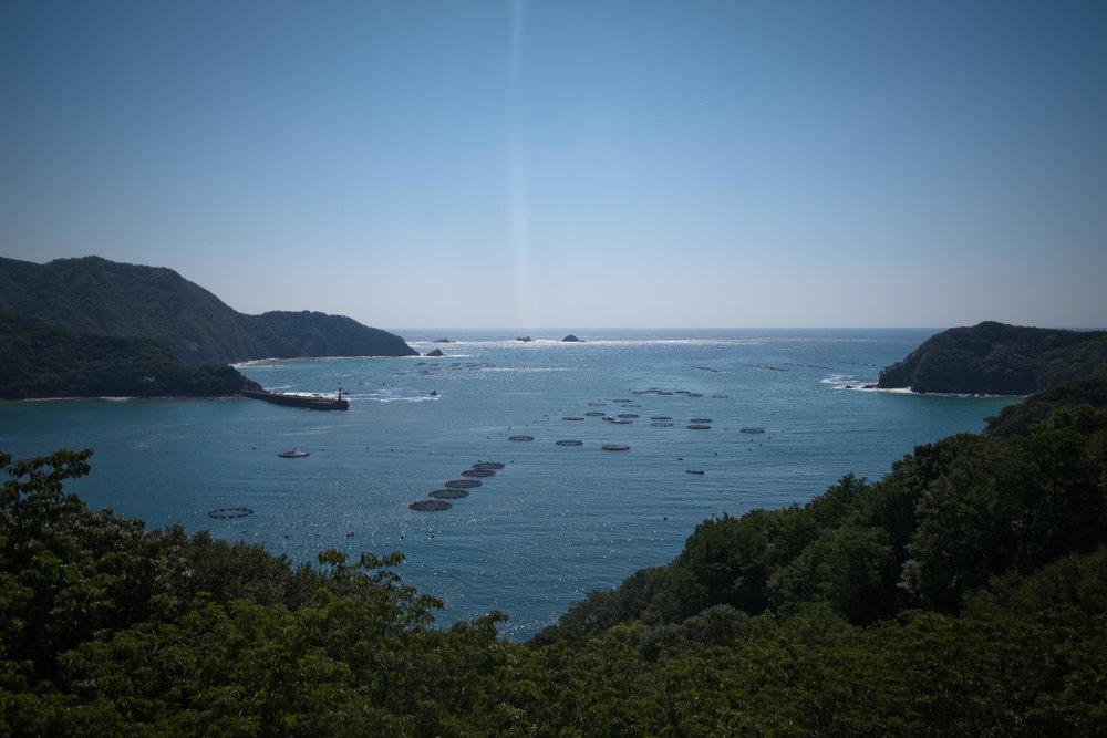 Kii_Nagashima_Shima-7.jpg