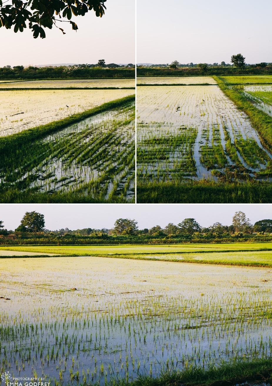 Thailand-Sukhothai-10.jpg