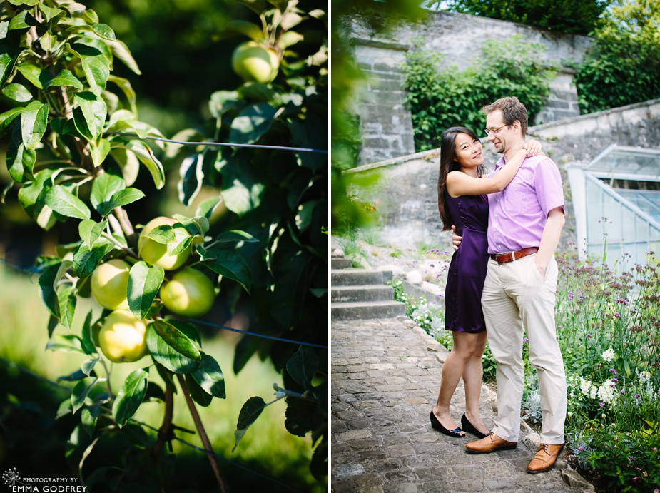 Couple portrait apple tree
