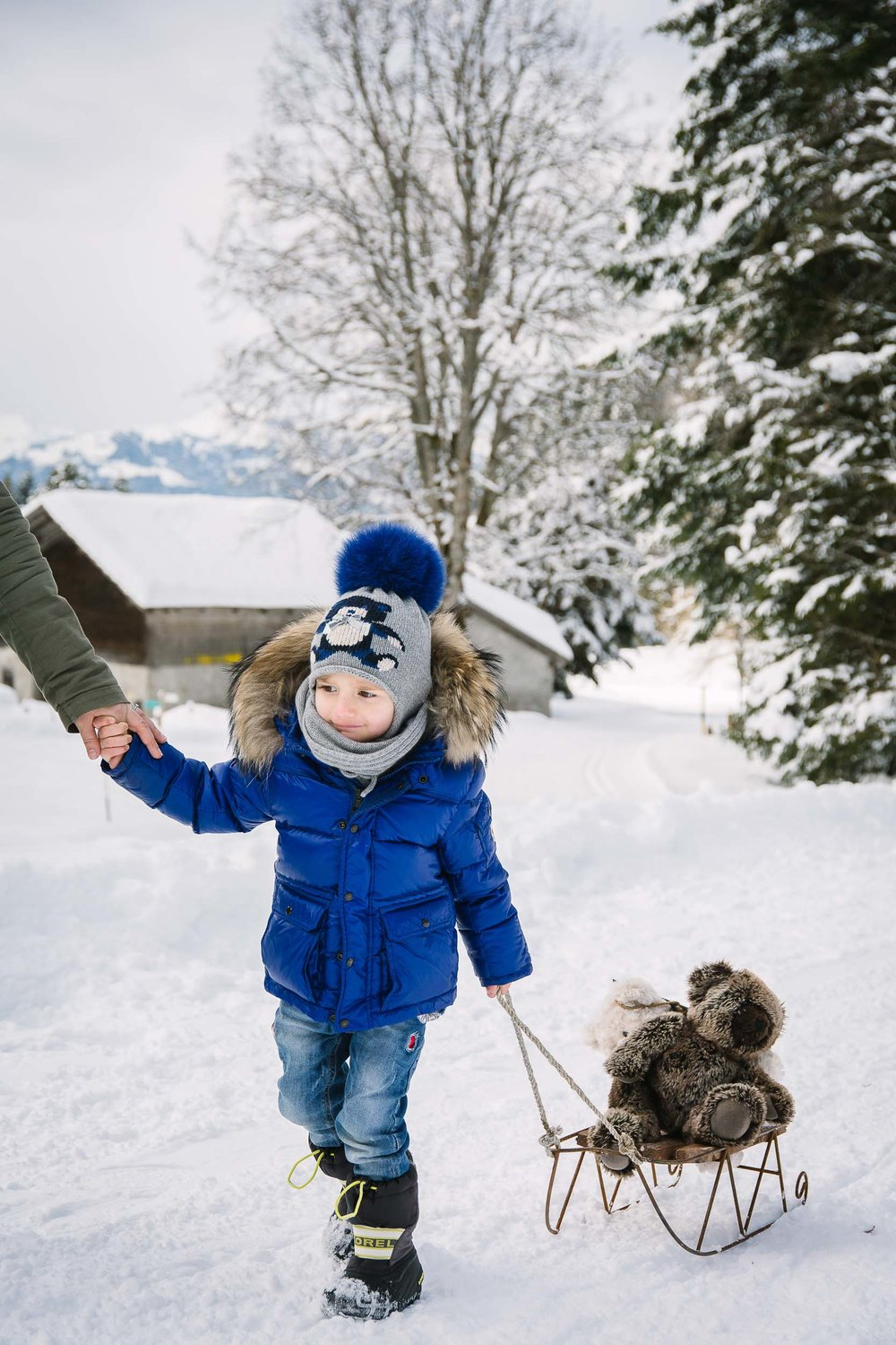 A little boy sledges with his parents and teddy in Solalex, Switzerland.