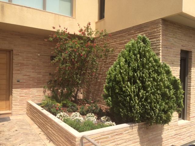Diseño de jardinería en Torrero