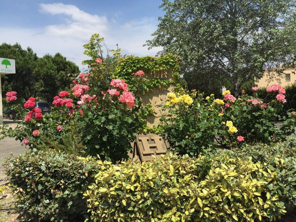 Gardeniers servicios de jardineria en zaragoza for Mantenimiento de jardines