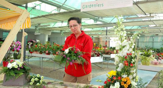 gardeniers atades zaragoza