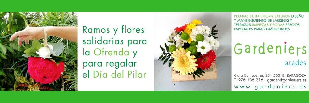 Portada Twitter Facebook.jpg