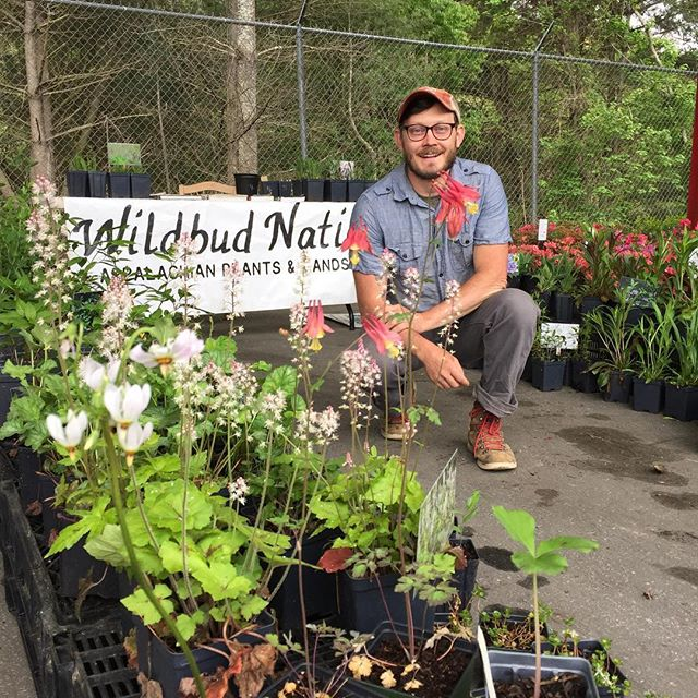 Come on out and catch us @growing.in.the.mountains !! A little rain won't hurt ya! here til 5 today and tomorrow!  Get your pollinator garden off to a strong start this spring. #nativeplants  #gardenforwildlife