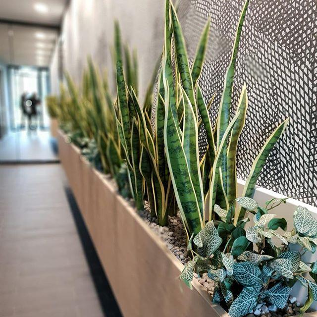 Entreehal upgrade in Hilversum.. design+build door MAAQ..