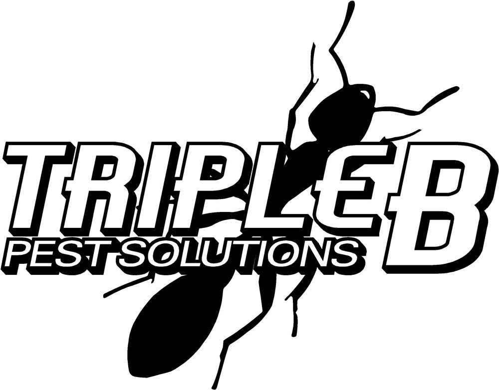 Triple B Pest Solution Jeep 3.jpg