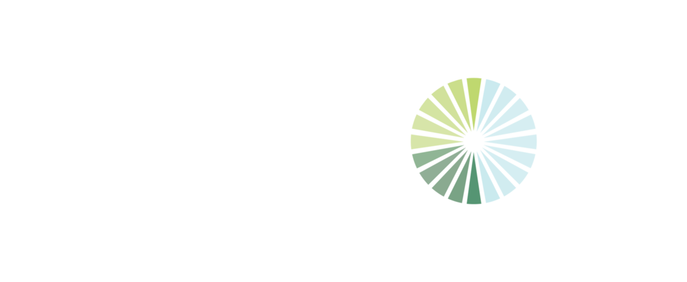 Foresight_FooterLogo.png