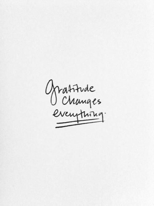 Gratitude | The Kardia Blog