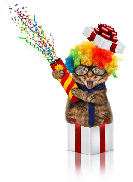 regalo gatito.jpg