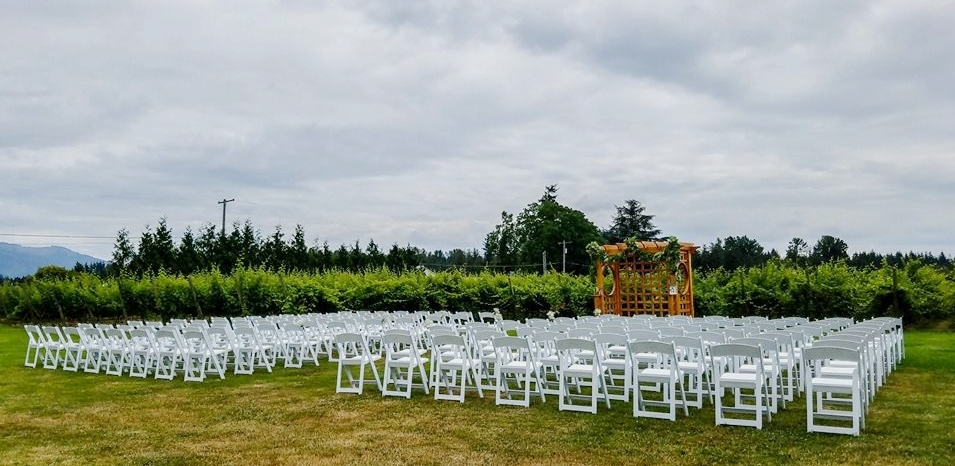 Wedding Chairs 1.jpg