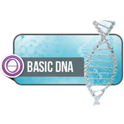 thetahealing-basic-dna-400.jpg