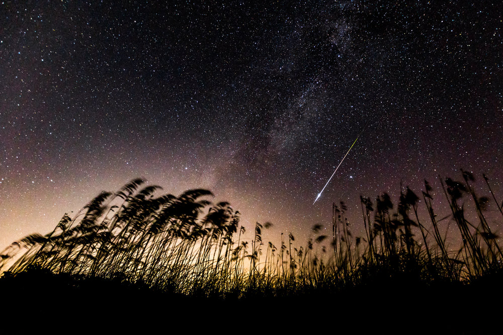 Night shot at Cumberland Island during the Perseid meteor shower