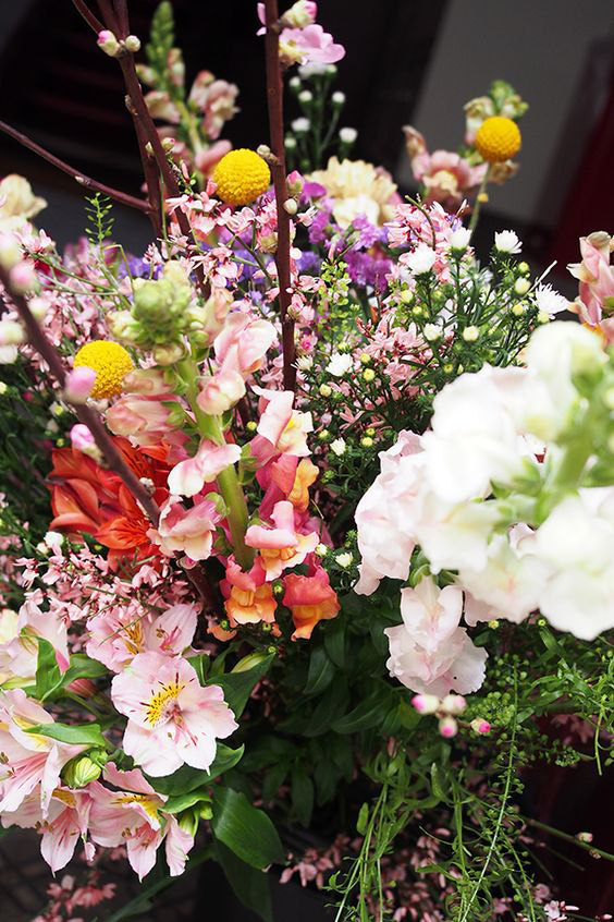 fleurs d'ici & d'ailleurs, debeaulieu