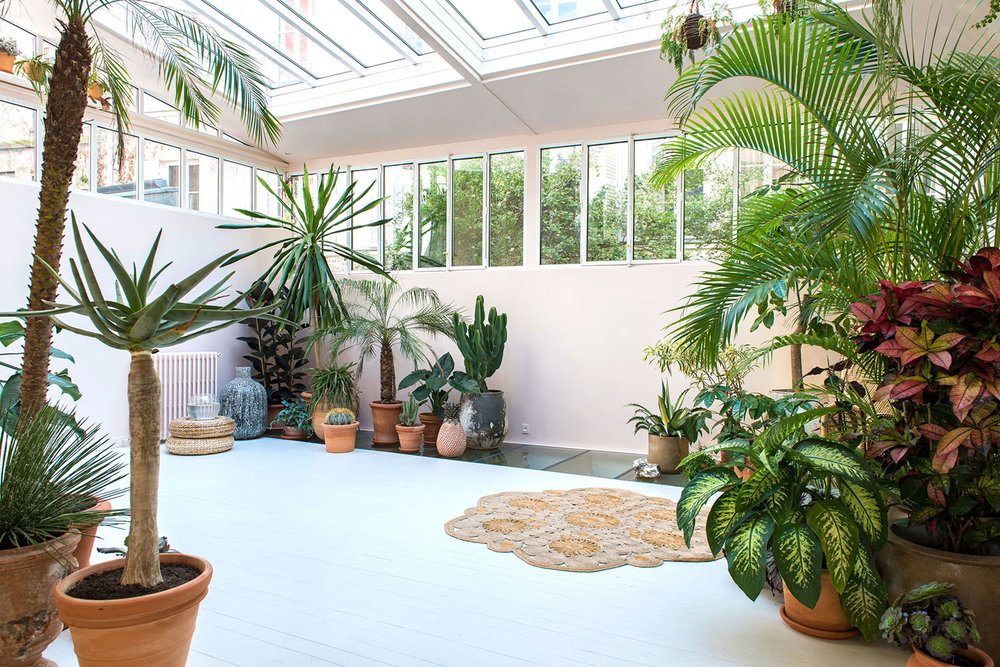 Le jardin d'hiver, vue 3.