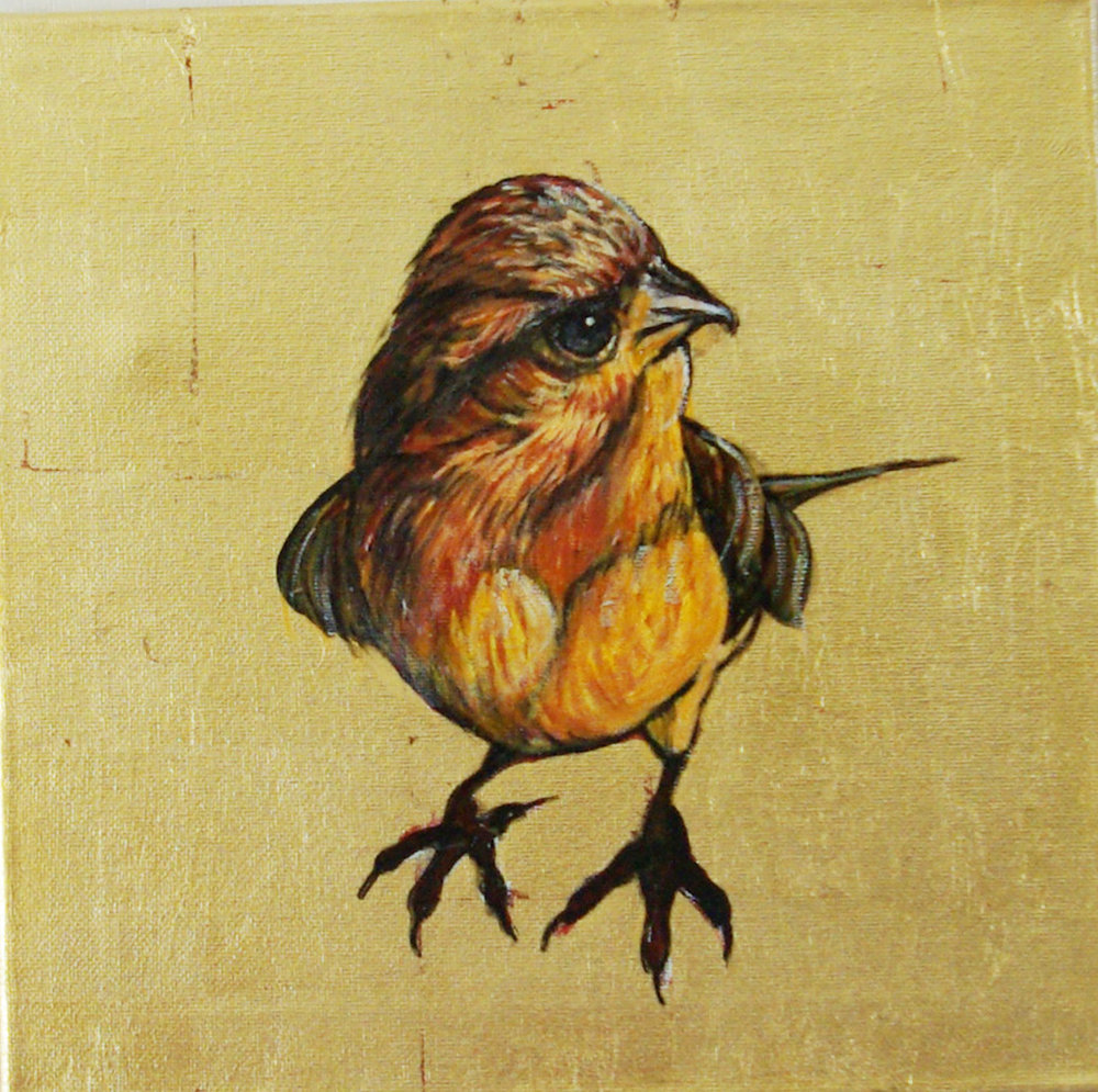 Tough Bird