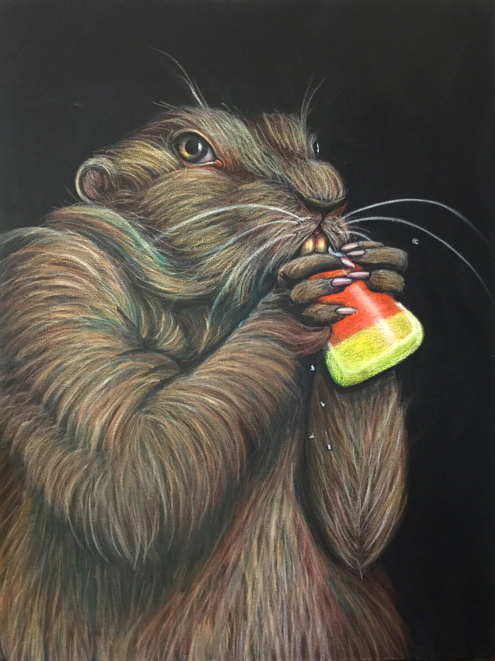 Ground Hog Devouring Candy Corn