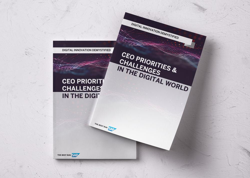 CEO priorities White paper