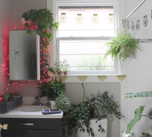 Bathroom decorated with plants galore, and papel picado banners