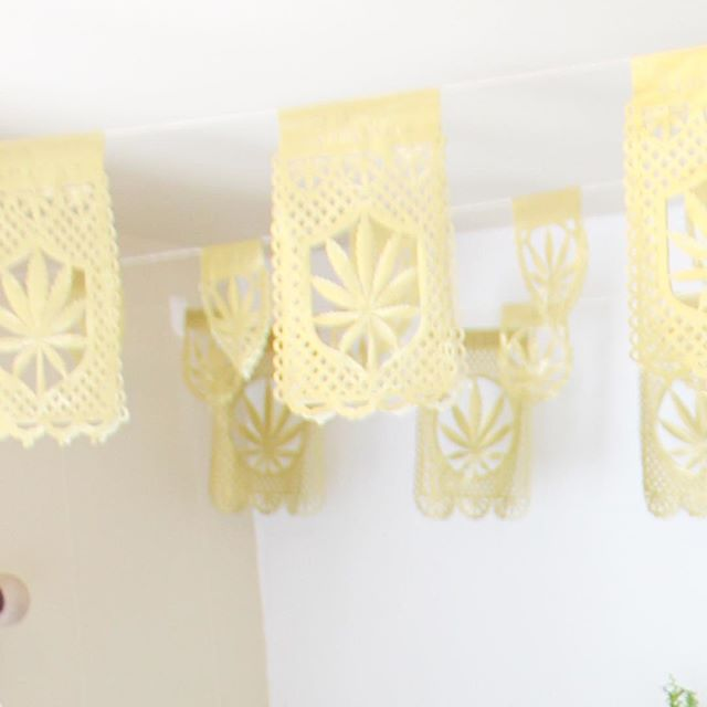 Papel Picado in GOLD for the office  #enjoytheride #dressupyouroffice . . . #CannaReignStudios #PapelPicado #PaperArts #PaperDecor #HomeDecor #PaperBanners #PaperCut #CannabisInspired #CannabisInspiredDecor #CannabisArt #CannabisCulture #CannabisCommunity #Cannabislife #SmallBusiness #HandCrafted #MadeInSanFrancisco