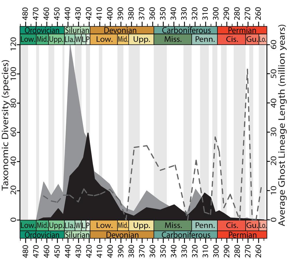 Diversity trends in eurypterids.