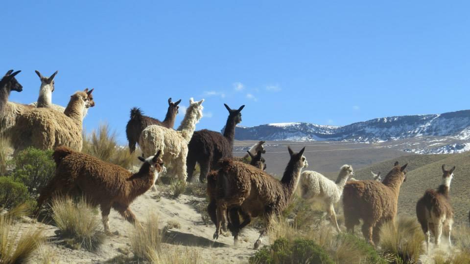 8_Huascaran.jpg