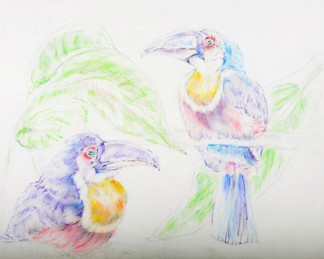 2014_2841_drawing.JPG