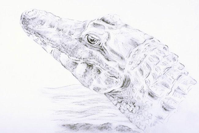 2014_2847_drawing.JPG
