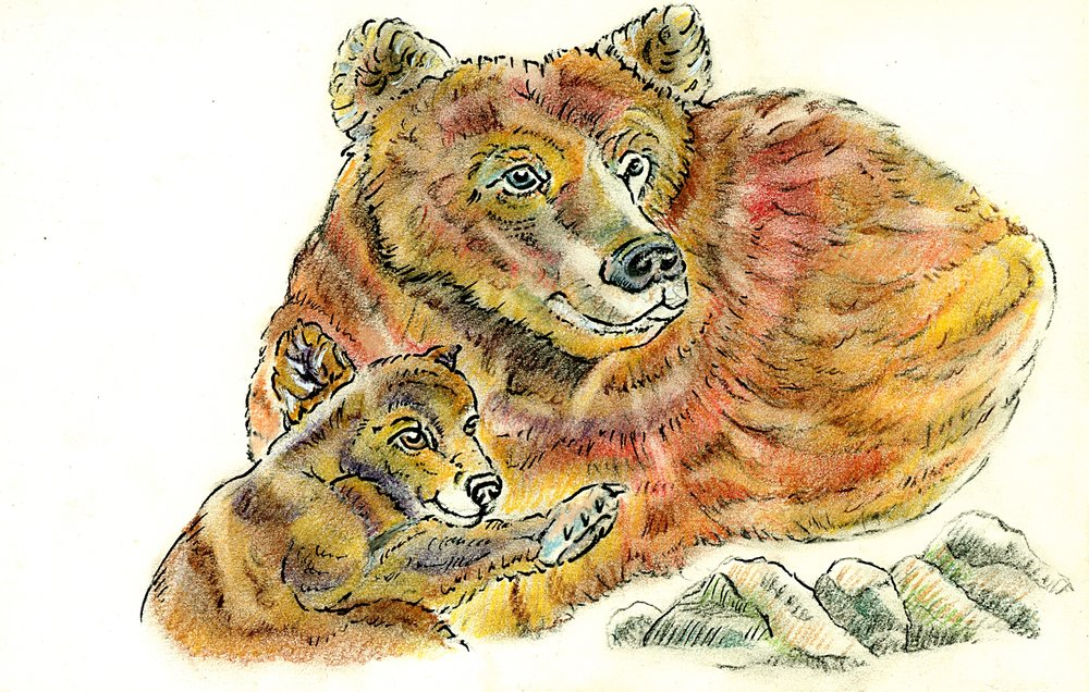 Jan - Grizzly Bears.jpg