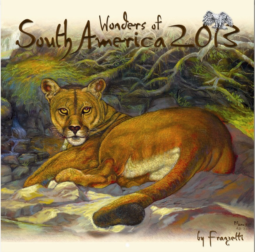 2013 Cover - Wonders of South America.jpg