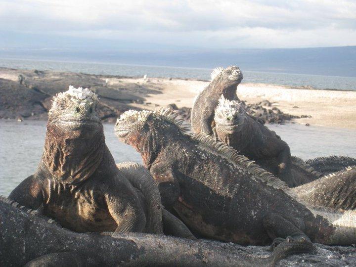 Ecuador 2009