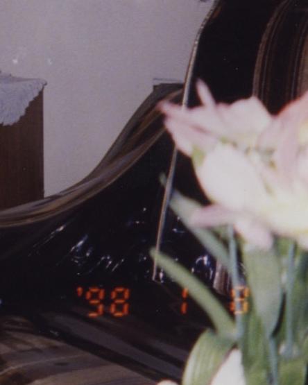 flor9.jpg
