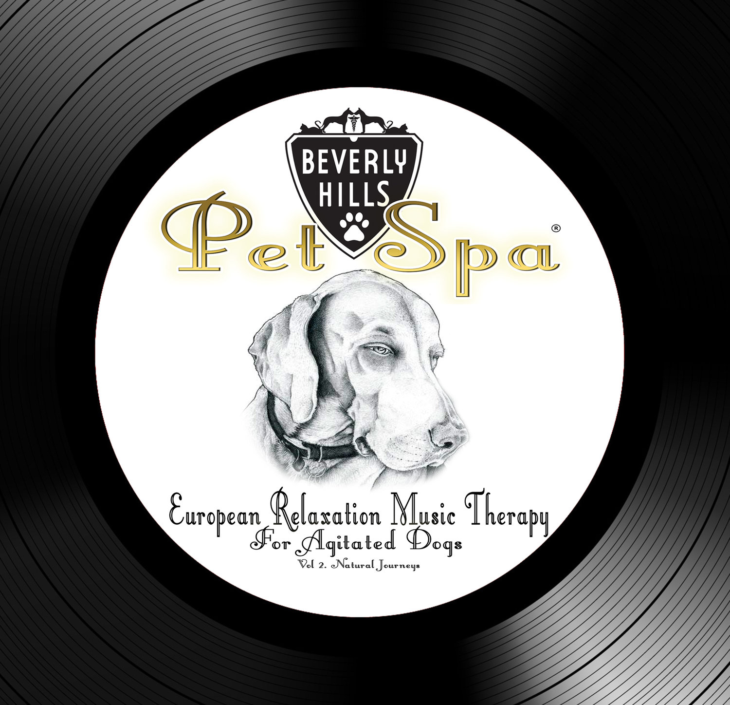European Relaxation Music Therapy for Agitated Dogs - Vol 2  Natural  Journeys [1 HOUR LONG CONTINUOUS] Download