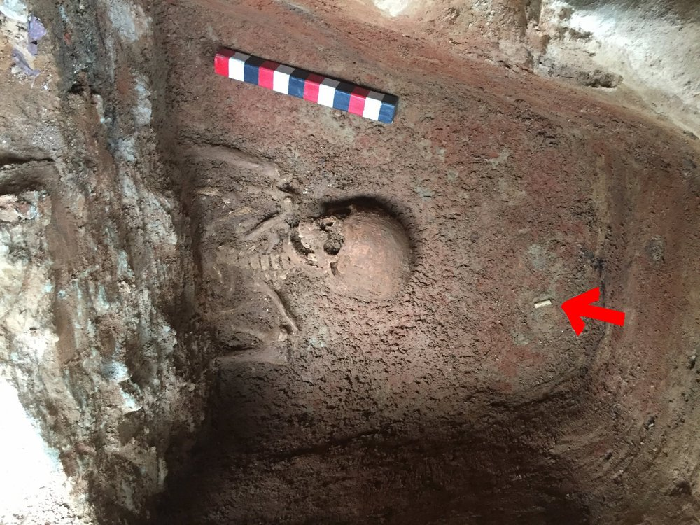A view of the burial discovered during the project. The arrow points to a clay pipe stem, perhaps discarded by the grave digger.