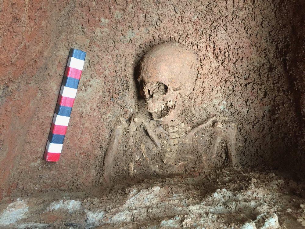 Fully Exposed Skeleton, pre cleaning 2.jpg