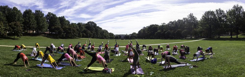yoga small.jpg
