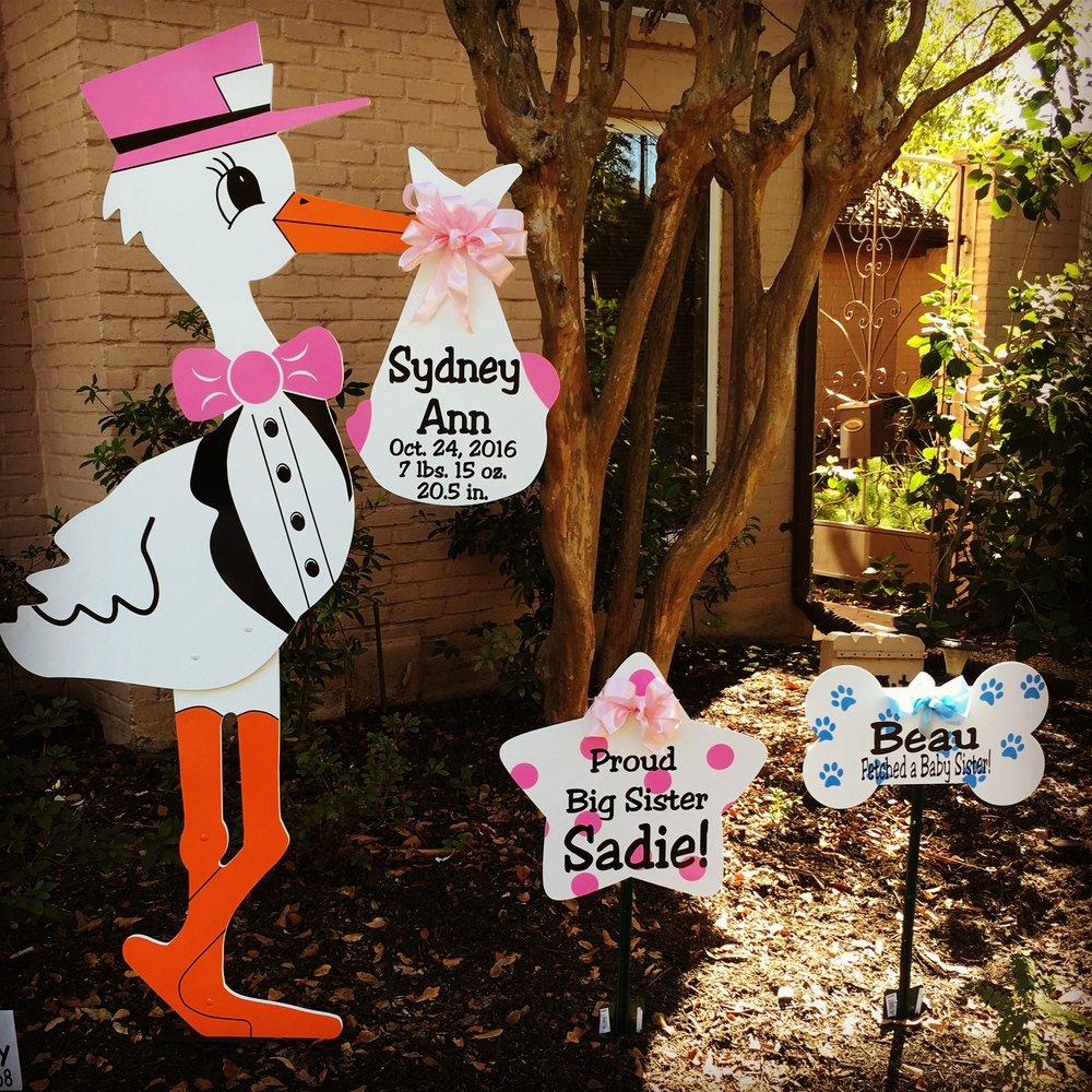 Pink stork sign, sibling star, dog bone sign